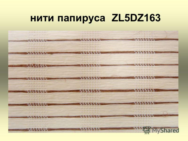нити папируса ZL5DZ163