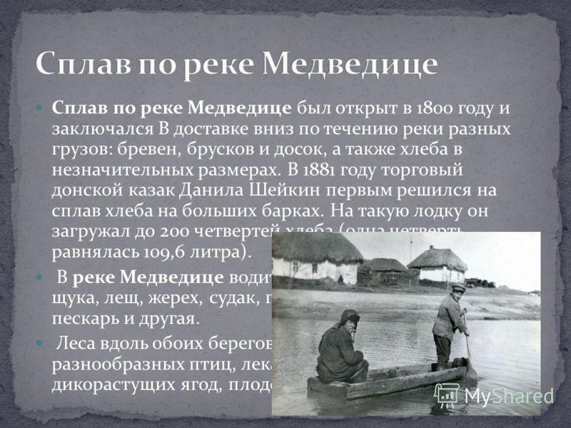 Сплав по реке Медведице был открыт в 1800 году и заключался В доставке вниз по течению реки разных грузов: бревен, брусков и досок, а также хлеба в незначительных размерах. В 1881 году торговый донской казак Данила Шейкин первым решился на сплав хлеб
