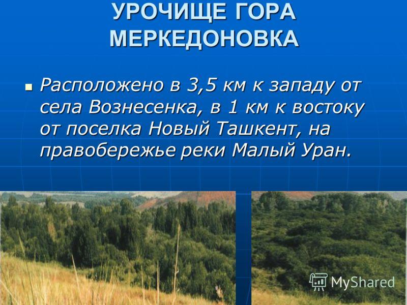УРОЧИЩЕ ГОРА МЕРКЕДОНОВКА Расположено в 3,5 км к западу от села Вознесенка, в 1 км к востоку от поселка Новый Ташкент, на правобережье реки Малый Уран. Расположено в 3,5 км к западу от села Вознесенка, в 1 км к востоку от поселка Новый Ташкент, на пр