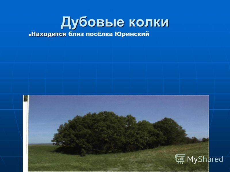 Дубовые колки Находится Находится близ посёлка Юринский