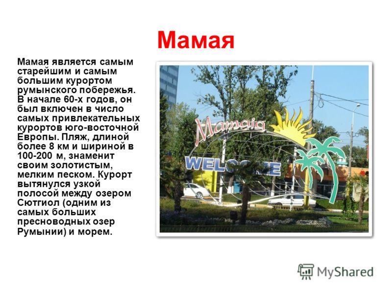 Мамая Мамая является самым старейшим и самым большим курортом румынского побережья. В начале 60-х годов, он был включен в число самых привлекательных курортов юго-восточной Европы. Пляж, длиной более 8 км и шириной в 100-200 м, знаменит своим золотис