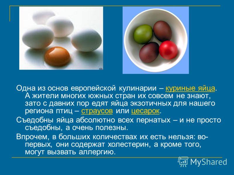 Одна из основ европейской кулинарии – куриные яйца. А жители многих южных стран их совсем не знают, зато с давних пор едят яйца экзотичных для нашего региона птиц – страусов или цесарок.куриные яйцастраусовцесарок Съедобны яйца абсолютно всех пернаты