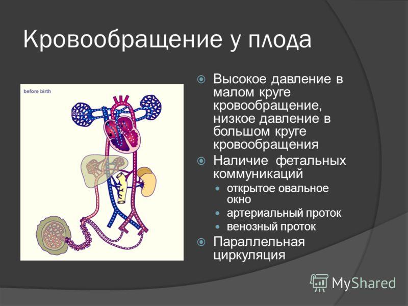 Кровообращение у плода Высокое давление в малом круге кровообращение, низкое давление в большом круге кровообращения Наличие фетальных коммуникаций открытое овальное окно артериальный проток венозный проток Параллельная циркуляция