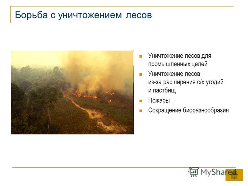 Борьба с уничтожением лесов Уничтожение лесов для промышленных целей Уничтожение лесов из-за расширения с/х угодий и пастбищ Пожары Сокращение биоразнообразия