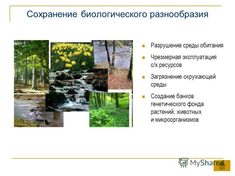 Сохранение биологического разнообразия Разрушение среды обитания Чрезмерная эксплуатация с/х ресурсов Загрязнение окружающей среды Создание банков генетического фонда растений, животных и микроорганизмов