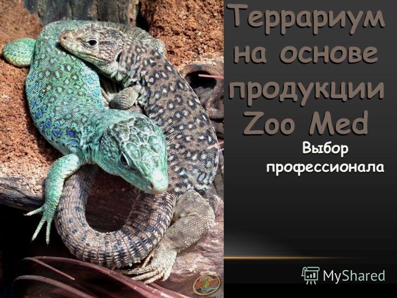 Выбор профессионала Террариум на основе продукции Zoo Med