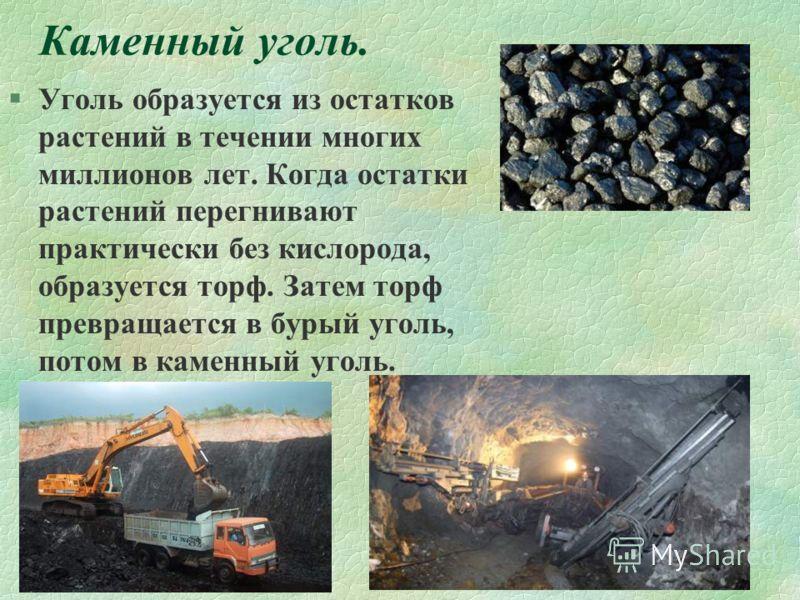 Каменный уголь. §Уголь образуется из остатков растений в течении многих миллионов лет. Когда остатки растений перегнивают практически без кислорода, образуется торф. Затем торф превращается в бурый уголь, потом в каменный уголь.