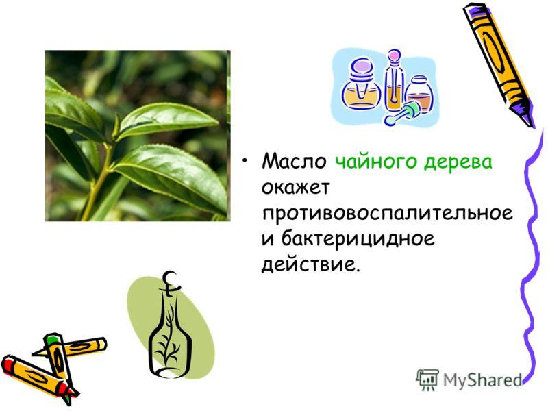 Масло чайного дерева окажет противовоспалительное и бактерицидное действие.