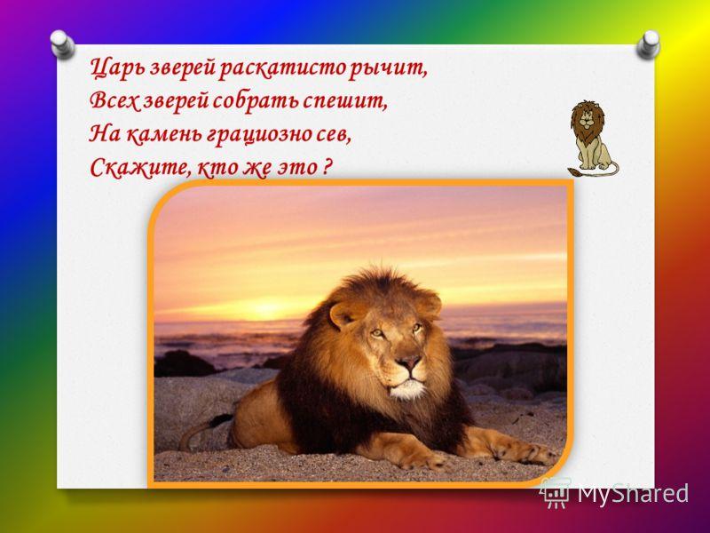 Царь зверей раскатисто рычит, Всех зверей собрать спешит, На камень грациозно сев, Скажите, кто же это ?
