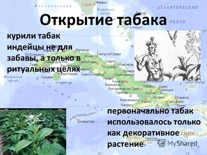 Открытие табака курили табак индейцы не для забавы, а только в ритуальных целях первоначально табак использовалось только как декоративное растение