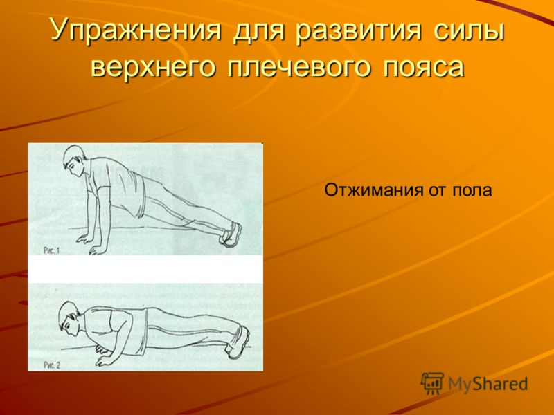 Упражнения для развития силы верхнего плечевого пояса Отжимания от пола