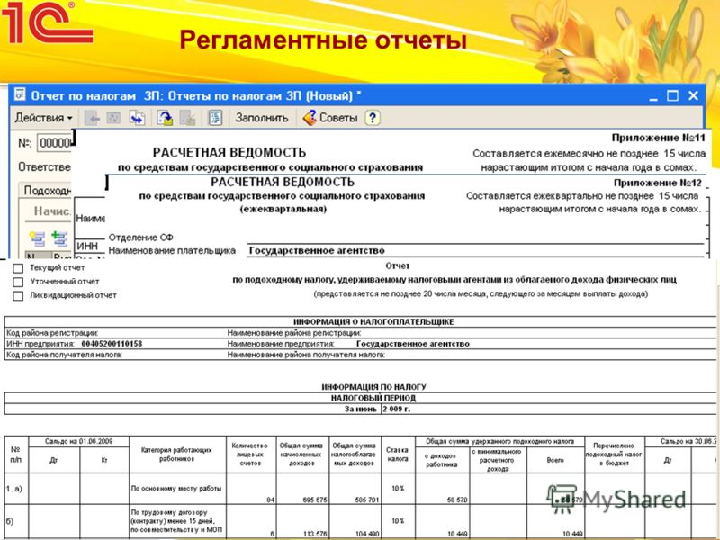 Жунусова Д.Ж. Регламентные отчеты