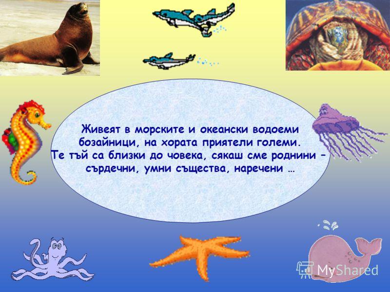 Живеят в морските и океански водоеми бозайници, на хората приятели големи. Те тъй са близки до човека, сякаш сме роднини – сърдечни, умни същества, наречени …