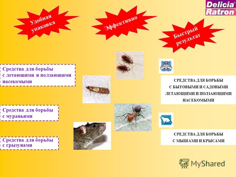 Удобная упаковка Эффективно Быстрый результат Средства для борьбы с летающими и ползающими насекомыми Средства для борьбы с грызунами Средства для борьбы с муравьями СРЕДСТВА ДЛЯ БОРЬБЫ С БЫТОВЫМИ И САДОВЫМИ ЛЕТАЮЩИМИ И ПОЛЗАЮЩИМИ НАСЕКОМЫМИ СРЕДСТВА