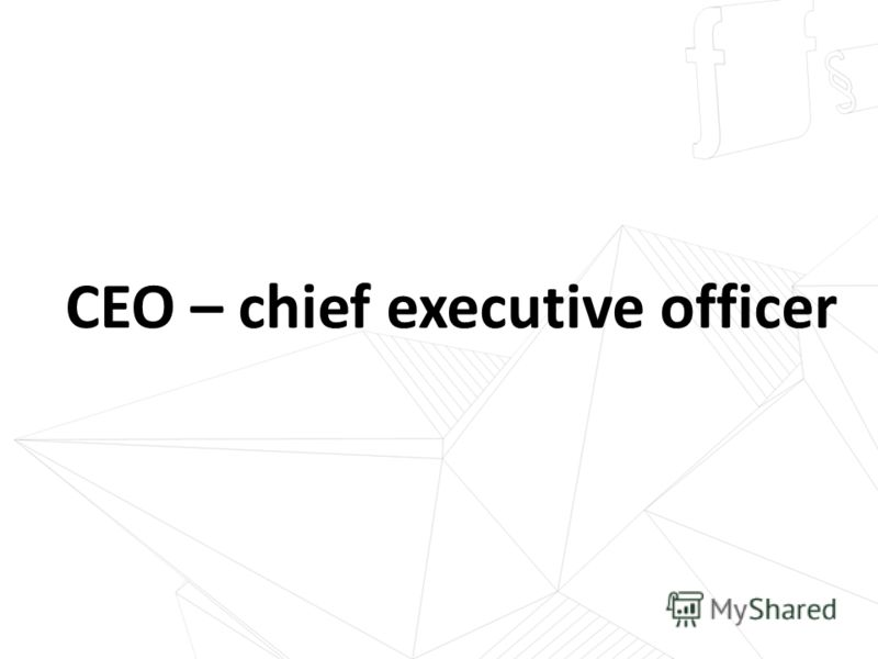 CEO – chief executive officer