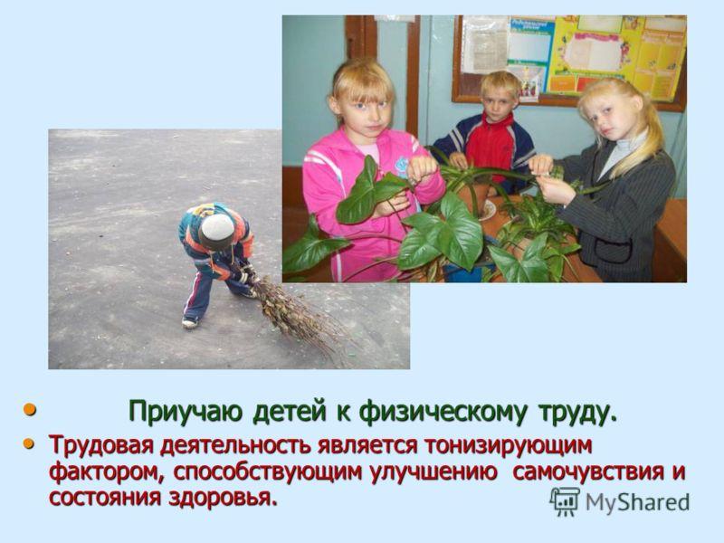 Приучаю детей к физическому труду. Приучаю детей к физическому труду. Трудовая деятельность является тонизирующим фактором, способствующим улучшению самочувствия и состояния здоровья. Трудовая деятельность является тонизирующим фактором, способствующ
