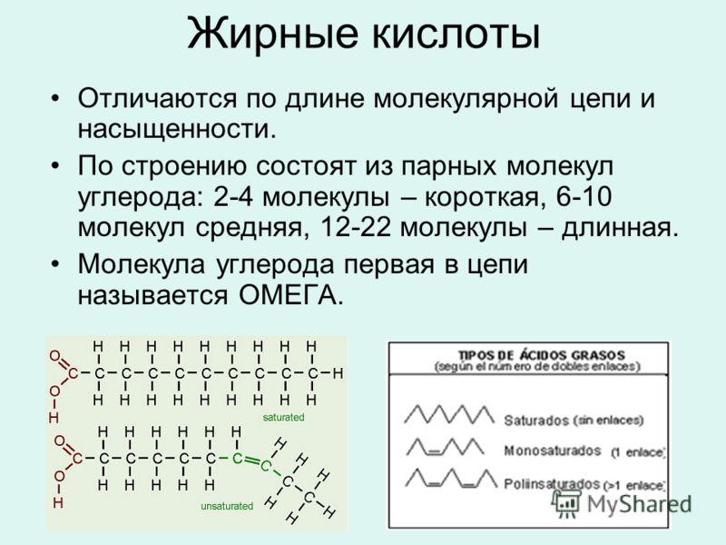 Жирные кислоты Отличаются по длине молекулярной цепи и насыщенности. По строению состоят из парных молекул углерода: 2-4 молекулы – короткая, 6-10 молекул средняя, 12-22 молекулы – длинная. Молекула углерода первая в цепи называется ОМЕГА.