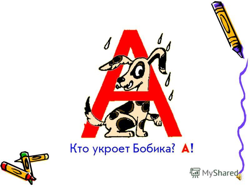 АлфавитАлфавит