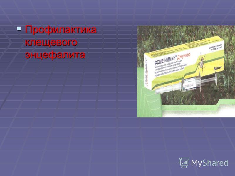Профилактика клещевого энцефалита Профилактика клещевого энцефалита