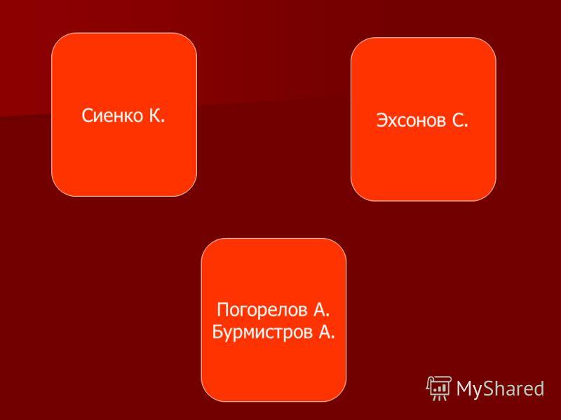 Сиенко К. Погорелов А. Бурмистров А. Эхсонов С.