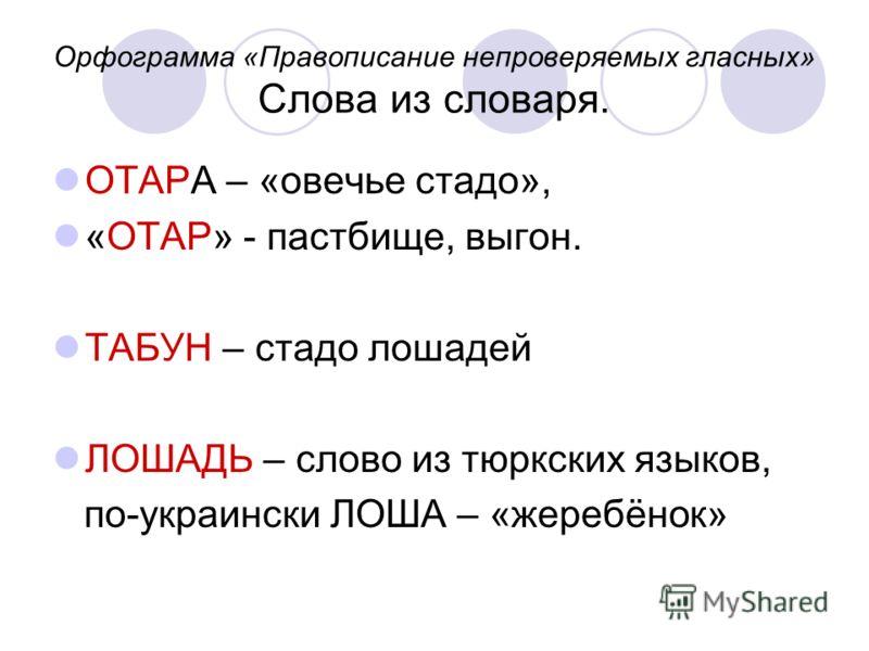 Орфограмма «Правописание непроверяемых гласных» Слова из словаря. ОТАРА – «овечье стадо», «ОТАР» - пастбище, выгон. ТАБУН – стадо лошадей ЛОШАДЬ – слово из тюркских языков, по-украински ЛОША – «жеребёнок»