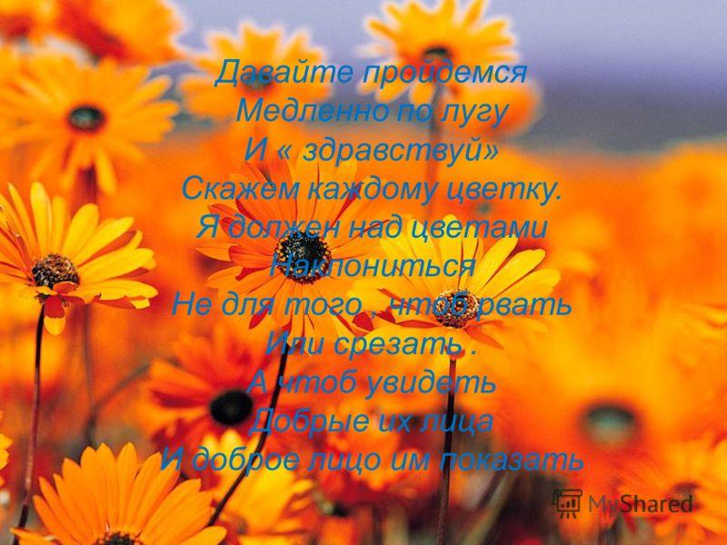 Давайте пройдемся Медленно по лугу И « здравствуй» Скажем каждому цветку. Я должен над цветами Наклониться Не для того, чтоб рвать Или срезать. А чтоб увидеть Добрые их лица И доброе лицо им показать