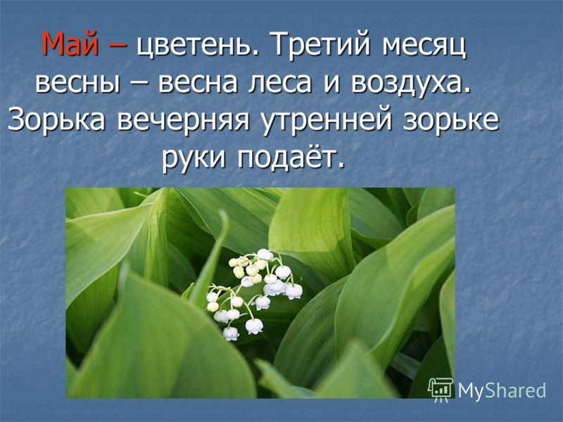 Май – цветень. Третий месяц весны – весна леса и воздуха. Зорька вечерняя утренней зорьке руки подаёт.