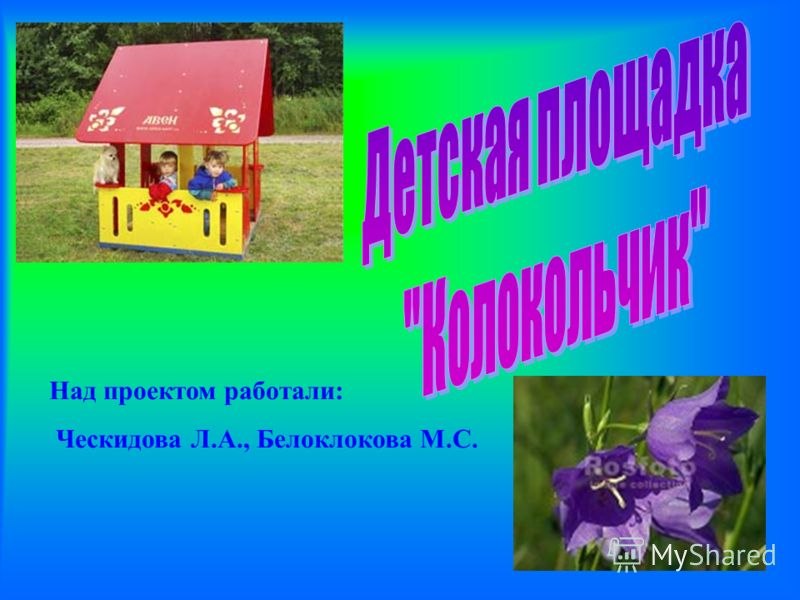Над проектом работали: Ческидова Л.А., Белоклокова М.С.