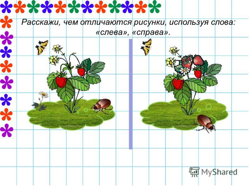 Расскажи, чем отличаются рисунки, используя слова: «слева», «справа».