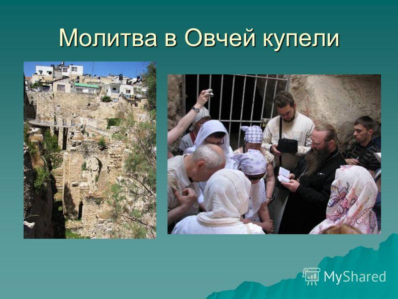 Молитва в Овчей купели