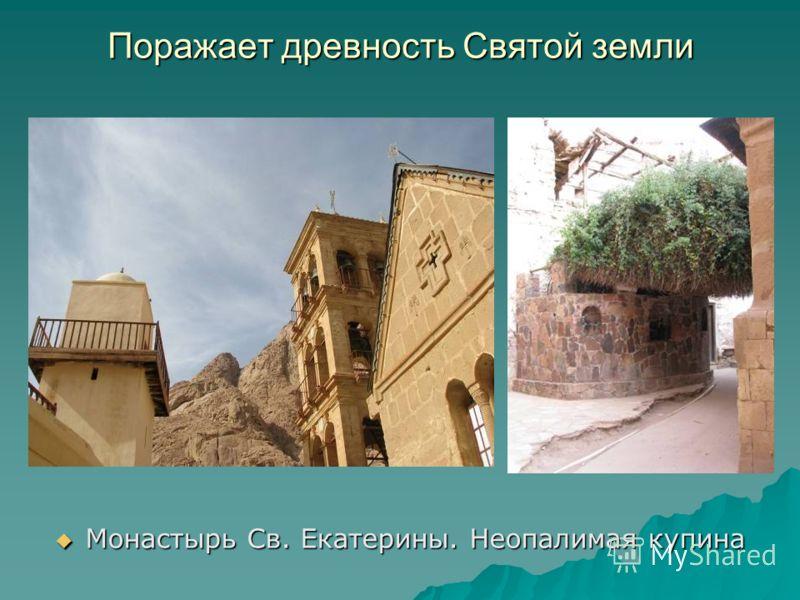 Монастырь Св. Екатерины. Неопалимая купина Монастырь Св. Екатерины. Неопалимая купина Поражает древность Святой земли