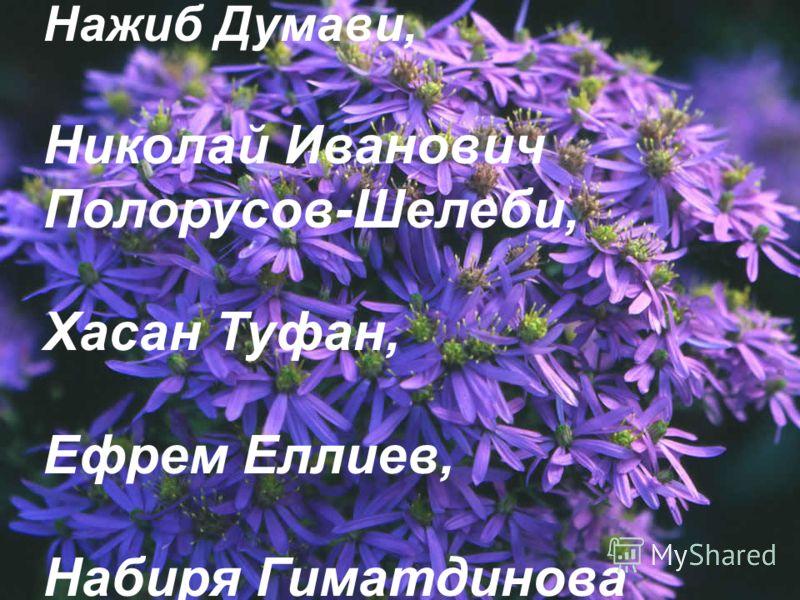 Нажиб Думави, Николай Иванович Полорусов-Шелеби, Хасан Туфан, Ефрем Еллиев, Набиря Гиматдинова