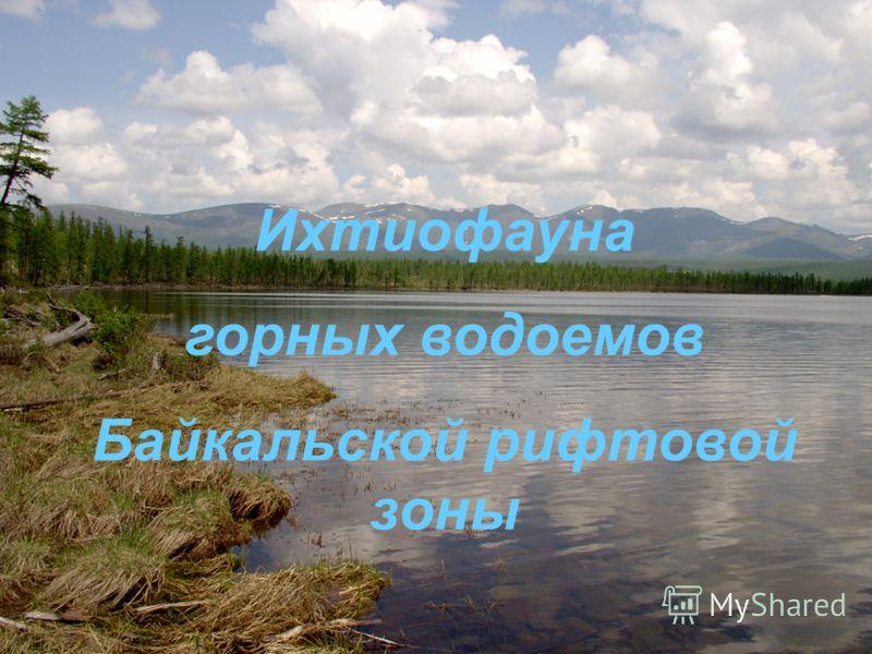 Ихтиофауна горных водоемов Байкальской рифтовой зоны