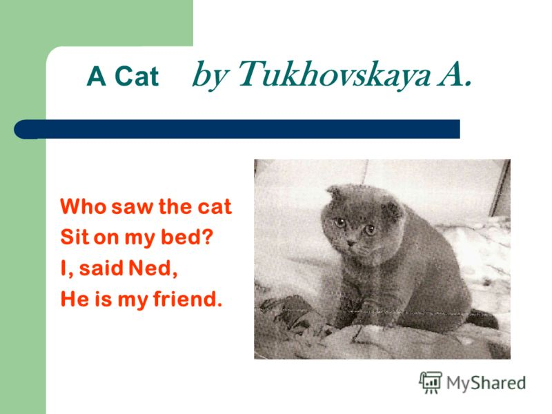 A Cat by Tukhovskaya A. Who saw the cat Sit on my bed? I, said Ned, He is my friend.