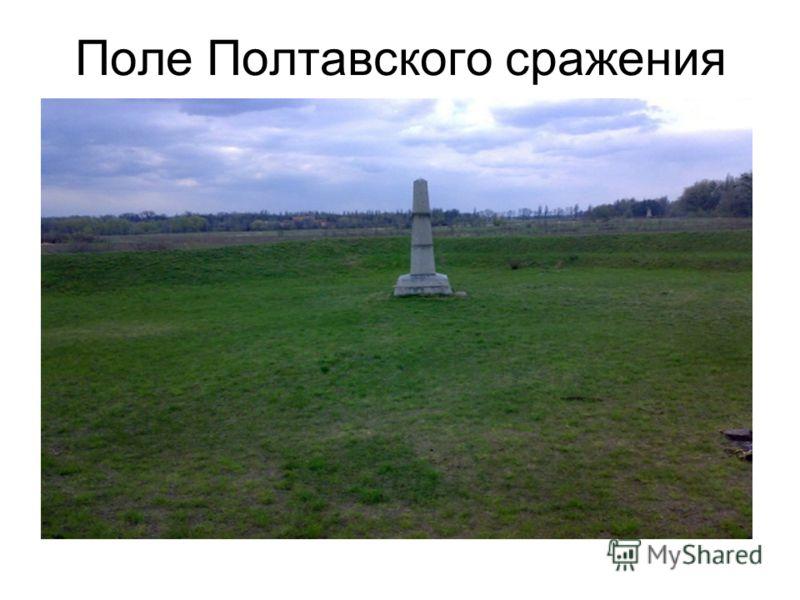 Поле Полтавского сражения