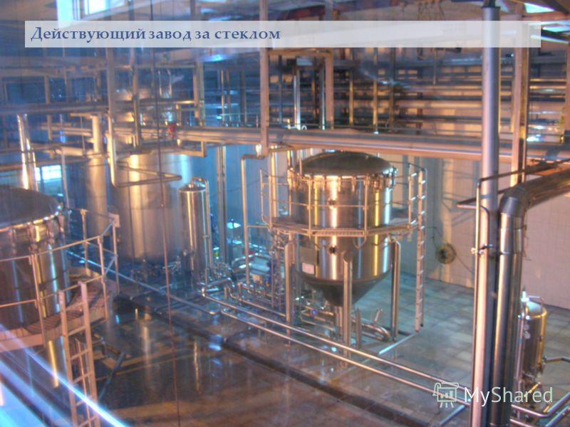 Действующий завод за стеклом