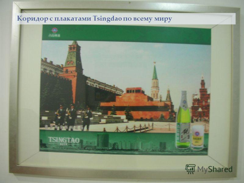 Tsingdao в России Коридор с плакатами Tsingdao по всему миру