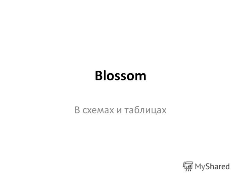 Blossom В схемах и таблицах