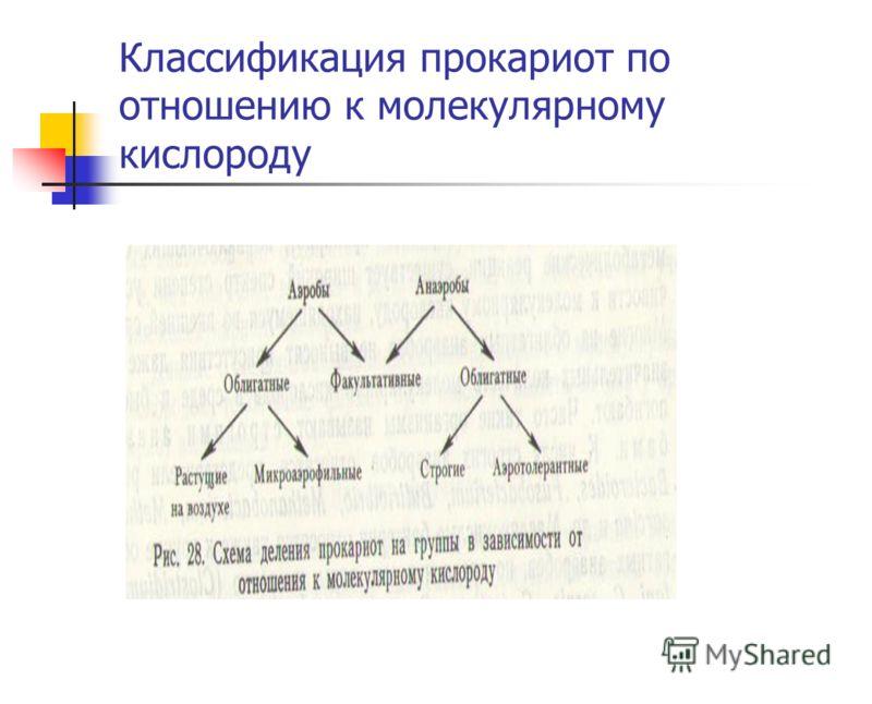 Классификация прокариот по отношению к молекулярному кислороду
