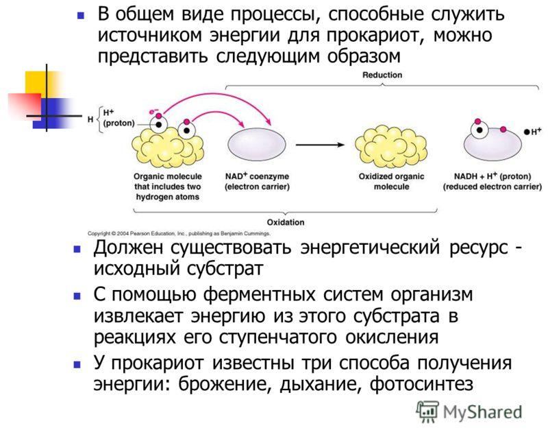 В общем виде процессы, способные служить источником энергии для прокариот, можно представить следующим образом Должен существовать энергетический ресурс - исходный субстрат С помощью ферментных систем организм извлекает энергию из этого субстрата в р