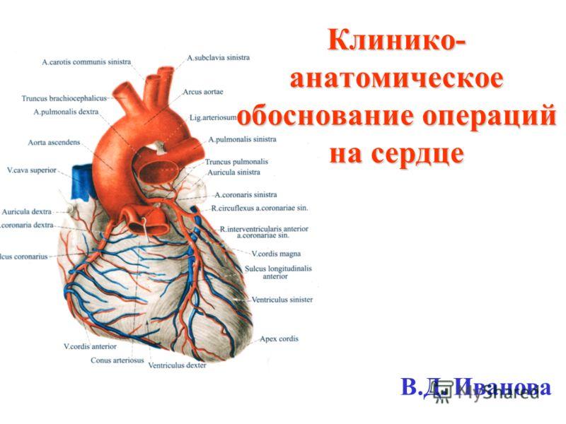 Клинико- анатомическое обоснование операций на сердце В.Д. Иванова