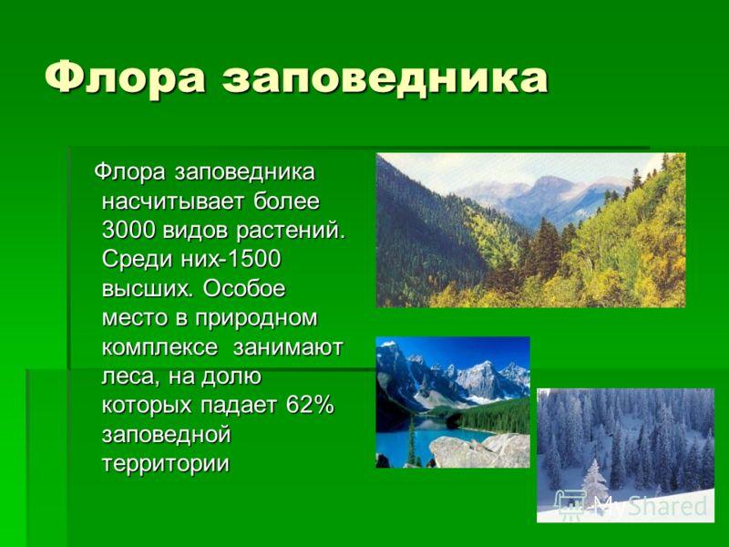 Природа Природа заповедника сохранилась в первозданной красоте,и этим она ценна для науки. Здесь представлены все типичные и уникальные ландшафты Северо –Западного Кавказа. Кавказский Заповедник включён в число первых биосферных заповедников, сеть ко