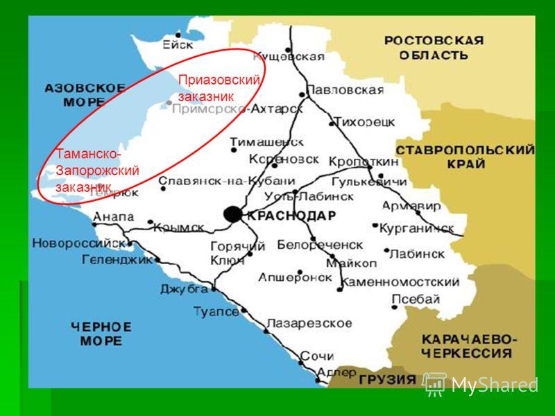 Доклад заказники и заповедники краснодарского края 1932