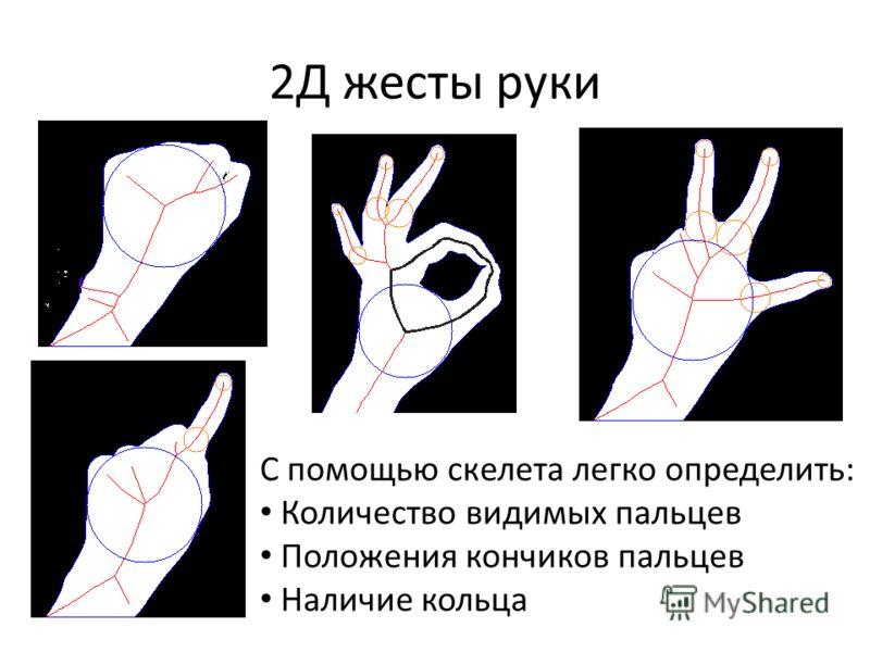 2Д жесты руки С помощью скелета легко определить: Количество видимых пальцев Положения кончиков пальцев Наличие кольца