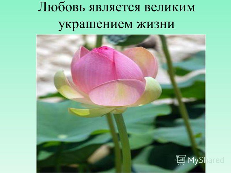 Любовь является великим украшением жизни