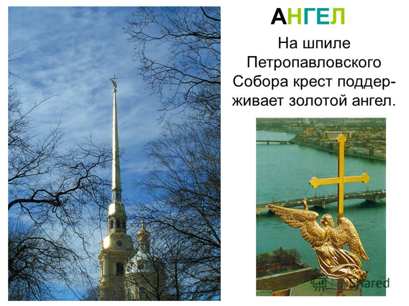 На шпиле Петропавловского Собора крест поддер- живает золотой ангел. АНГЕЛ