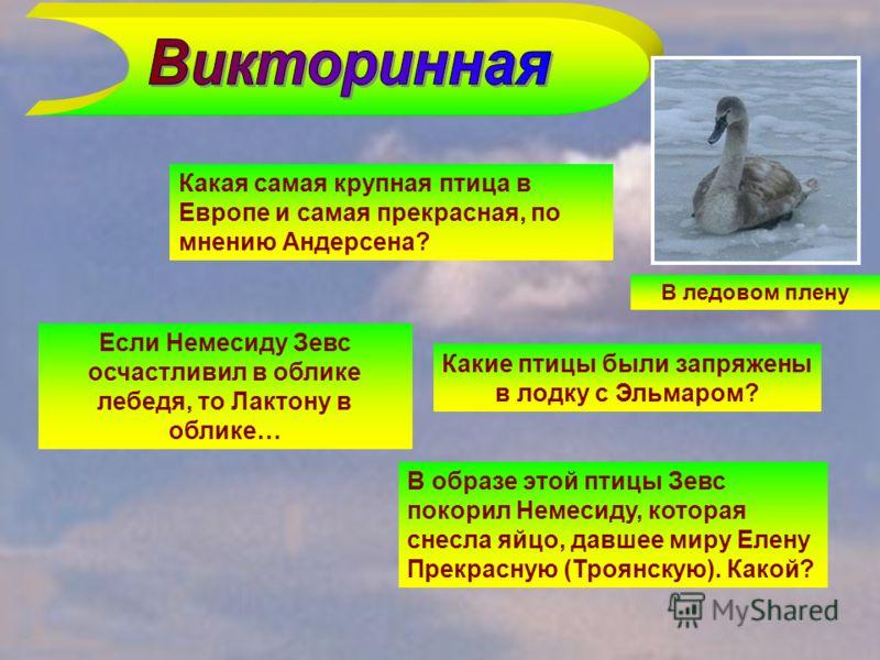 Какая самая крупная птица в Европе и самая прекрасная, по мнению Андерсена? Какие птицы были запряжены в лодку с Эльмаром? Если Немесиду Зевс осчастливил в облике лебедя, то Лактону в облике… В образе этой птицы Зевс покорил Немесиду, которая снесла