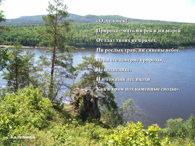 «О, человек! Природа – мать ни рек и ни морей От глаз твоих не прячет, Ни рослых трав, ни синевы небес. Цени его доверие природы, Не подведи ее. И в темный лес входи Как в храм под каменные своды». Калиновка