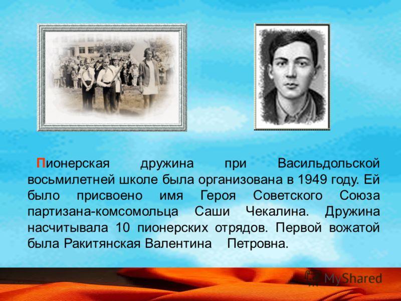 Пионерская дружина при Васильдольской восьмилетней школе была организована в 1949 году. Ей было присвоено имя Героя Советского Союза партизана-комсомольца Саши Чекалина. Дружина насчитывала 10 пионерских отрядов. Первой вожатой была Ракитянская Вален