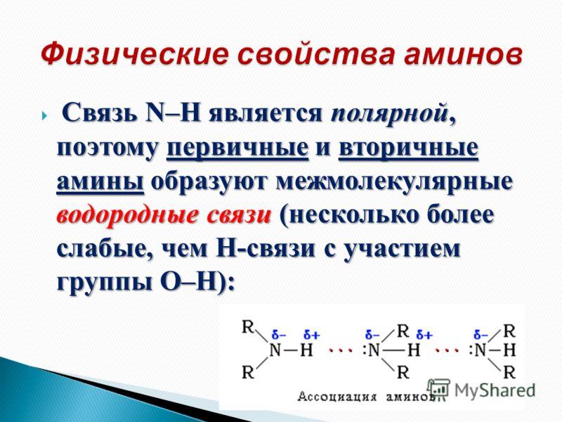 Связь N–H является полярной, поэтому первичные и вторичные амины образуют межмолекулярные водородные связи (несколько более слабые, чем Н-связи с участием группы О–Н):